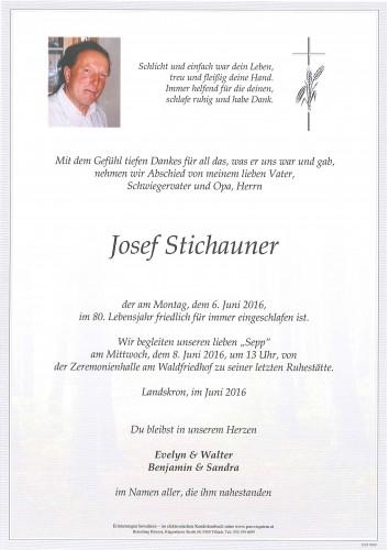 Josef Stichauner