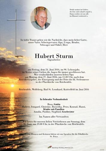 Hubert Sturm