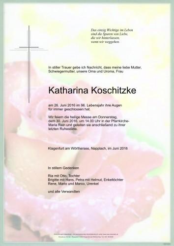 Katharina Koschitzke
