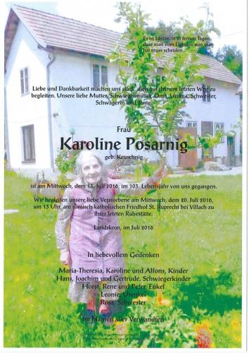 Karoline Posarnig