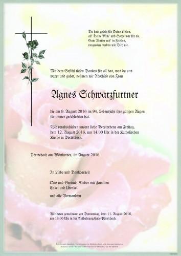 Agnes Schwarzfurtner