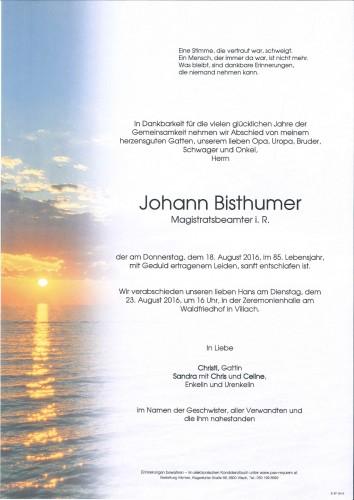 Johann Bisthumer