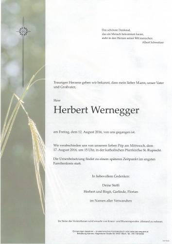 Herbert Wernegger