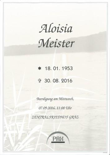 Aloisia Meister