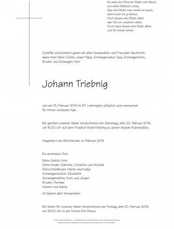 Johann Triebnig