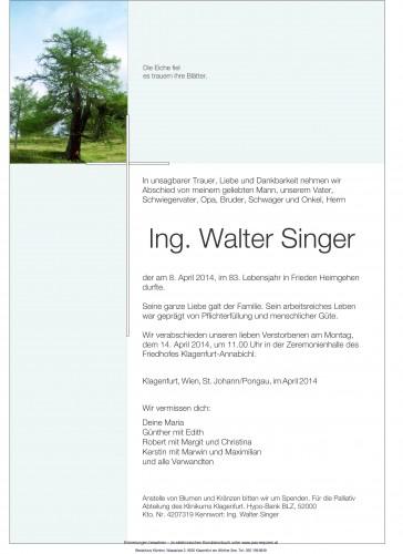 Ing. Walter Singer