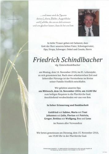 Friedrich Schindlbacher
