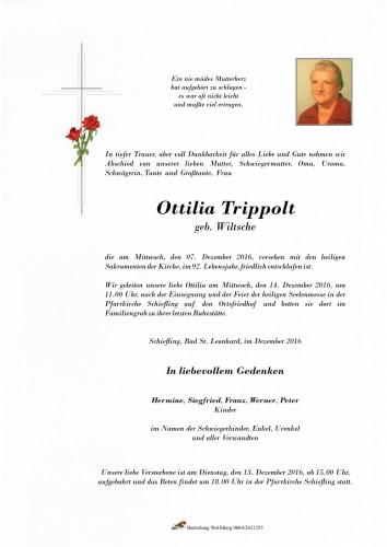 Trippolt Ottilia