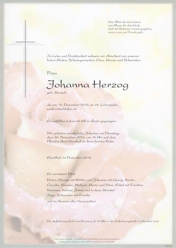 Johanna Herzog