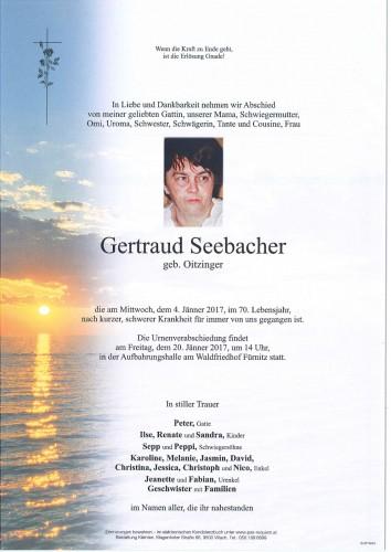 Gertraud Seebacher