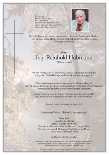 Ing. Reinhold Hubmann