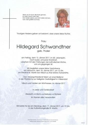 Hildegard Schwandtner