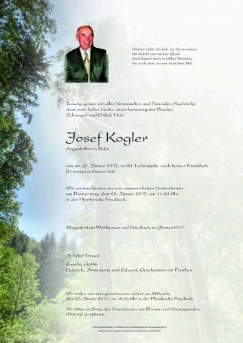 Josef Kogler