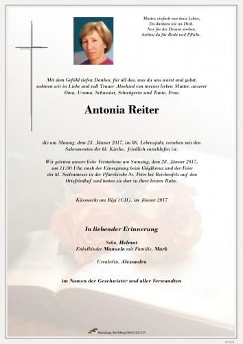 Antonia Reiter