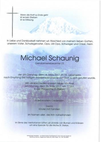 Michael Schaunig