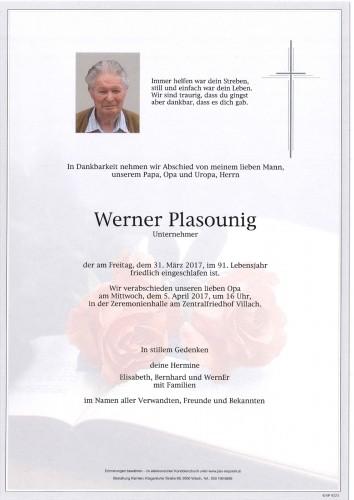 Werner Plasounig
