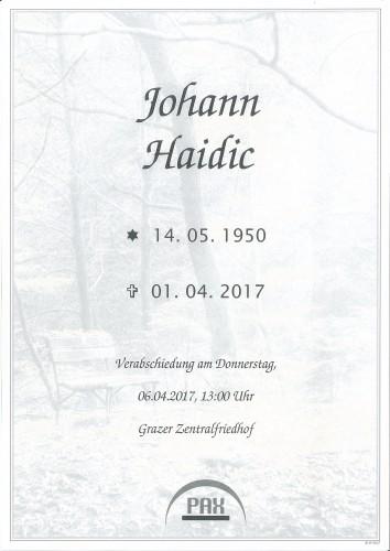 Johann Haidic