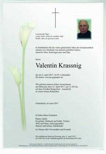 Valentin Krassnig