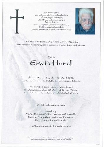 Erwin Handl