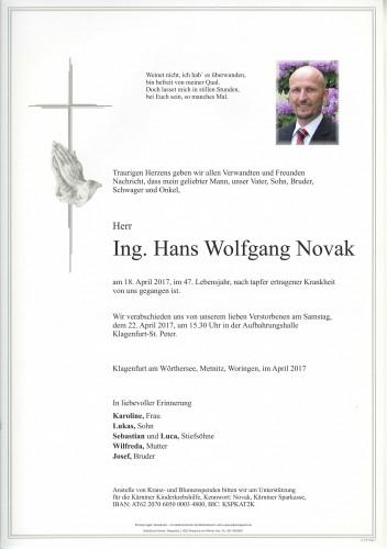 Ing. Hans Wolfgang Novak