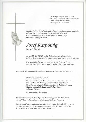 Josef Raspotnig