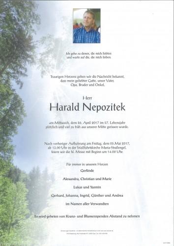 Harald Nepozitek
