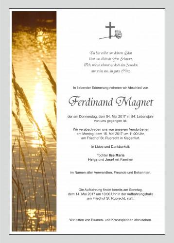 Ferdinand Magnet