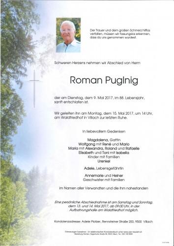 Roman Puglnig