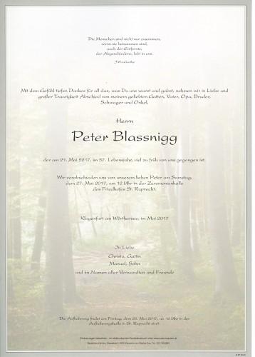 Peter Blassnigg
