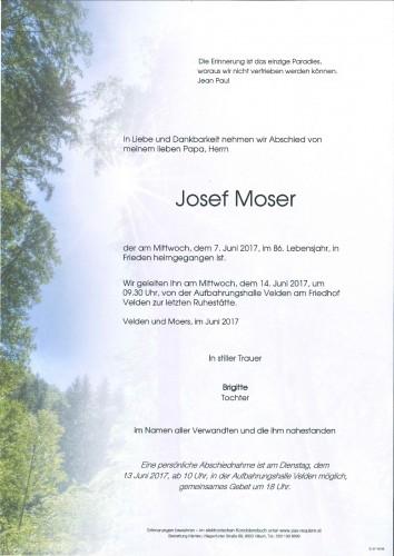 Ing. Josef Moser