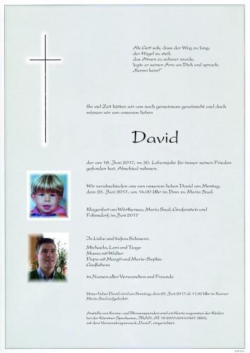 David Strauß