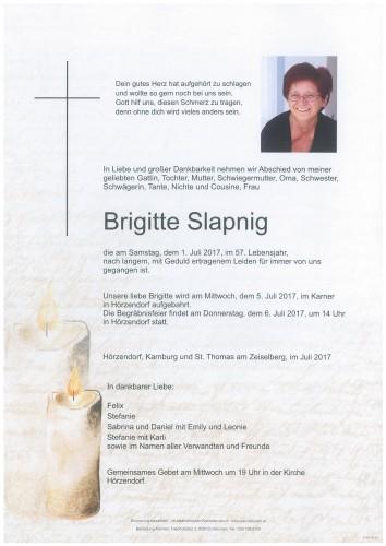 Brigitte Slapnig