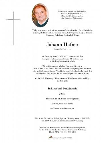 Johann Hafner