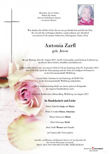 Antonia Zarfl