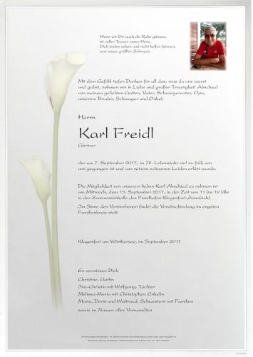 Karl Freidl