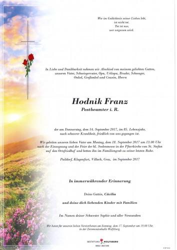 Franz Hodnik