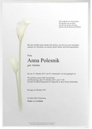 Anna Polesnik