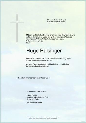 Hugo Pulsinger