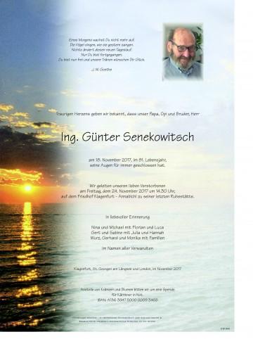 Ing. Günter Senekowitsch